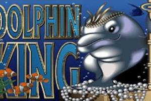 dolphin king slots tournament miami club casino