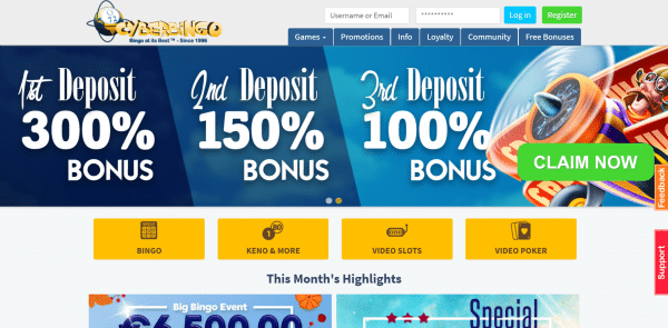 cyber bingo bonus chip and free spins